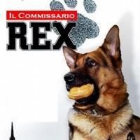 Rex 8