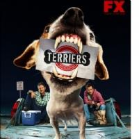 TERRIERS - CANI SCIOLTI